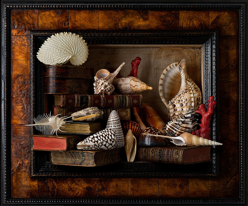 Kevin Best, Still Life with Shells and Books